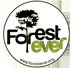 logo_forestever